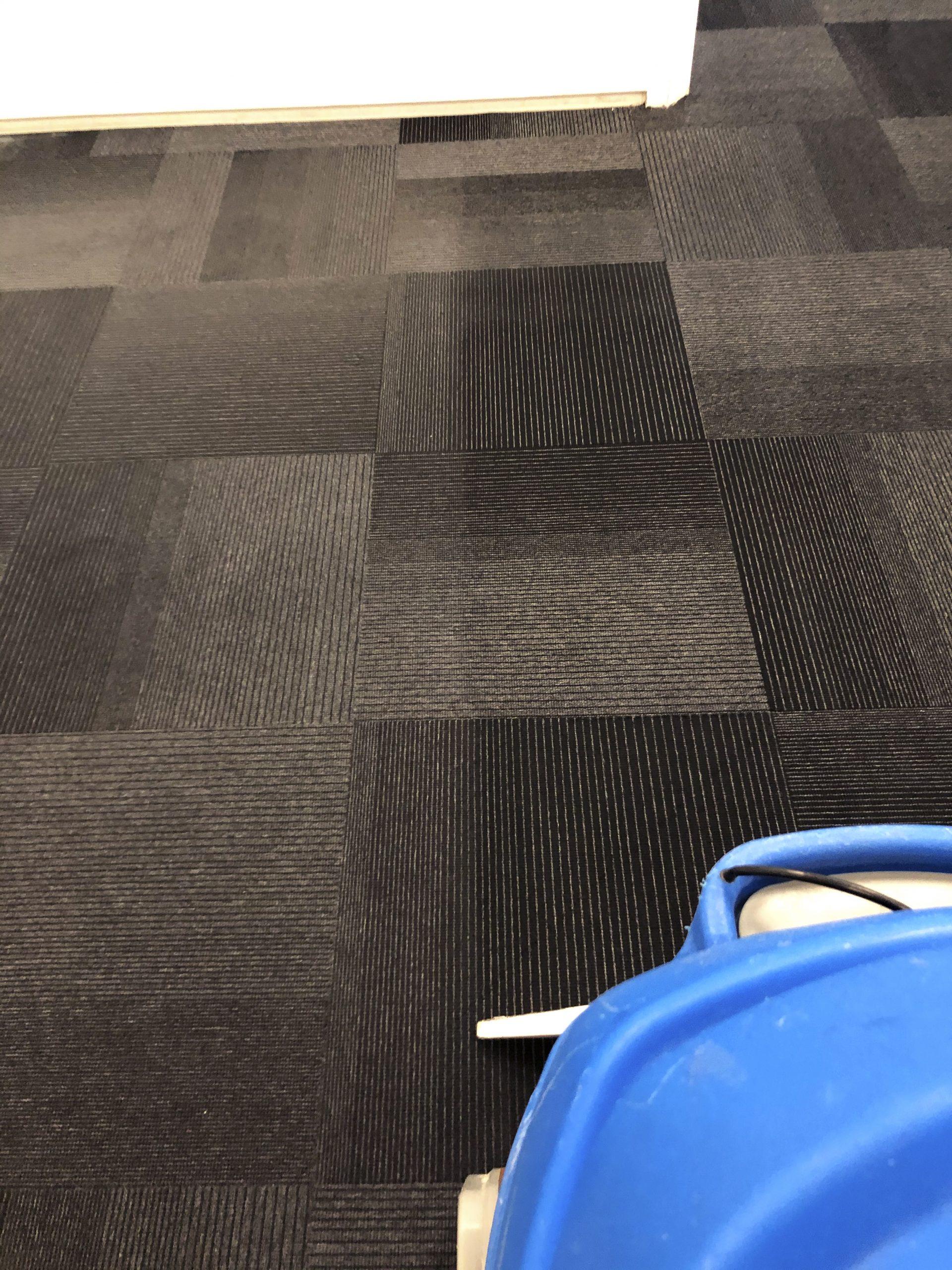 Commercial Carpet Bristol